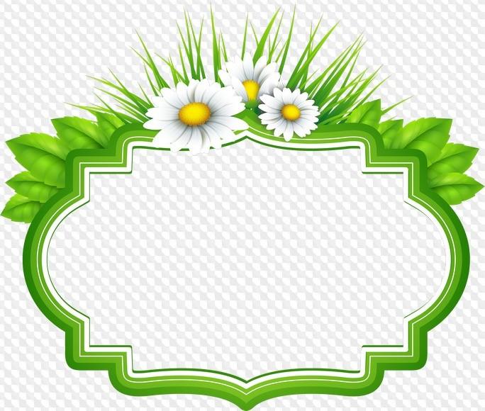 100 Marcos De Flores Bonitas Para Fotos Gratis