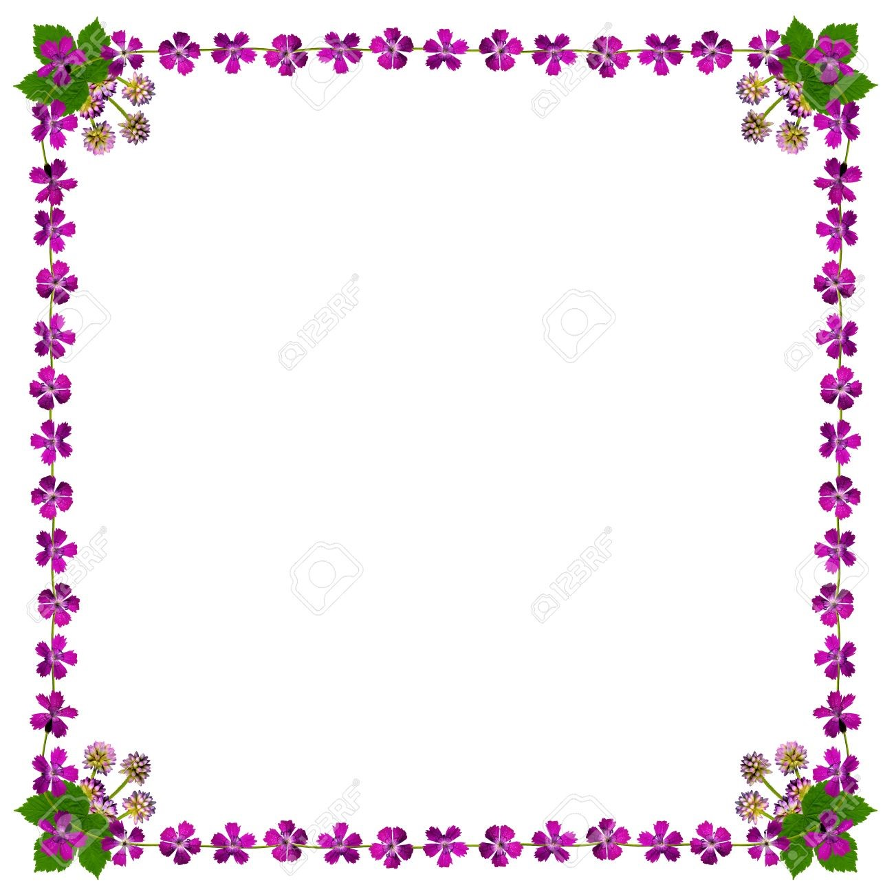 Marco de flores cuadrado en color morado