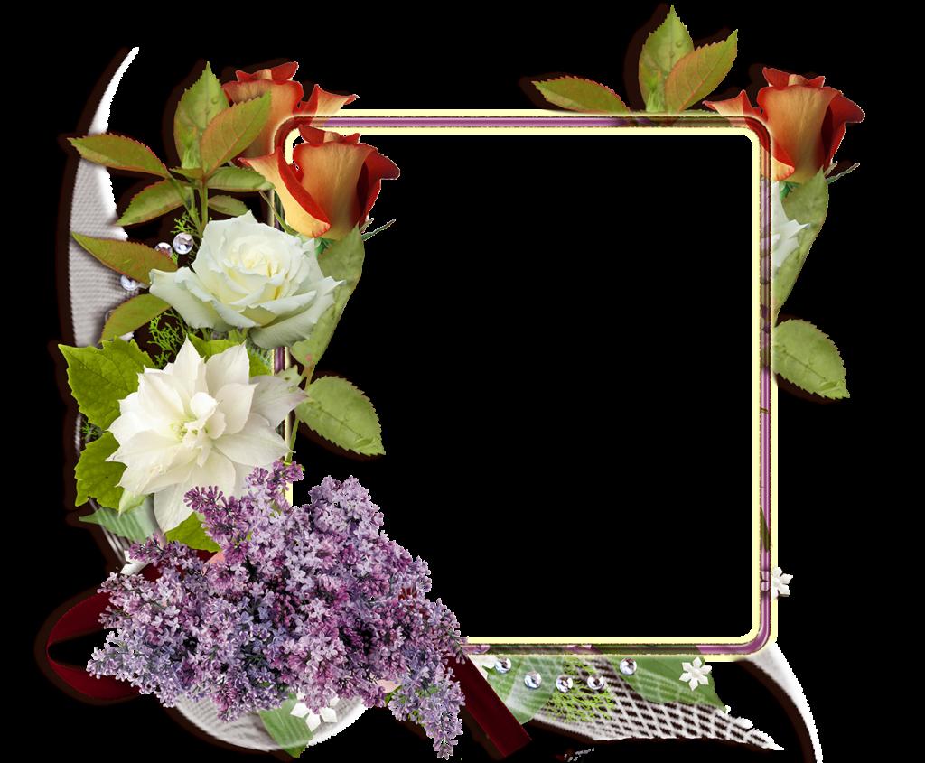 Fotomontaje con rosas blancas y rojas - Descargar marcos gratis