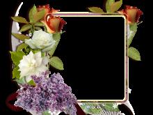 Fotomontaje con rosas blancas y rojas