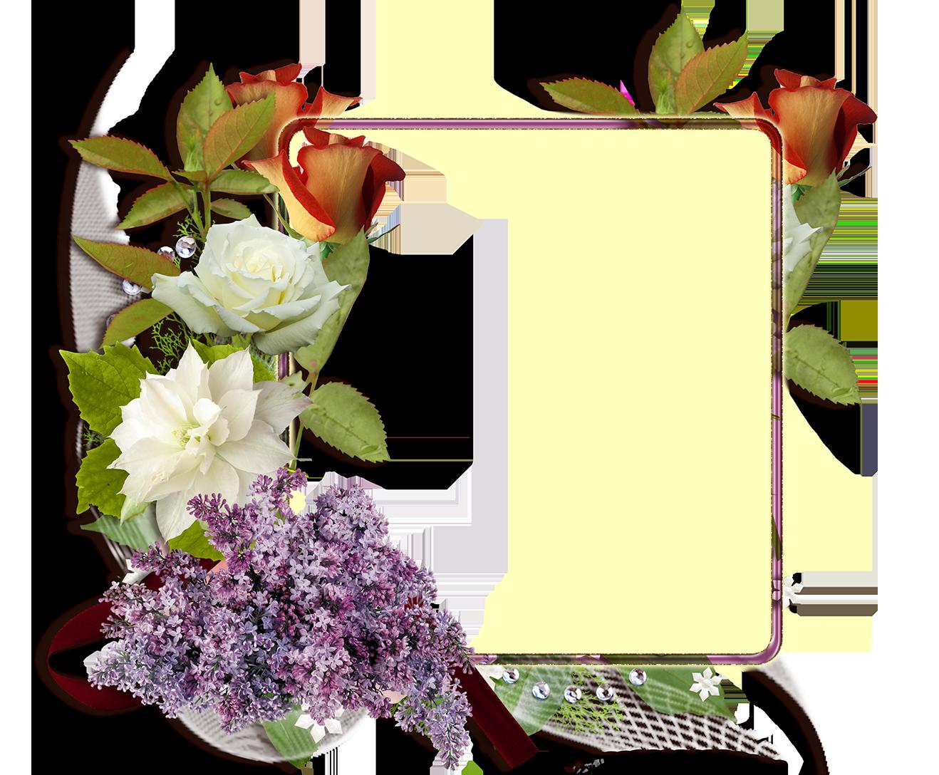 Fotomontaje Con Rosas Blancas Y Rojas Descargar Marcos Gratis