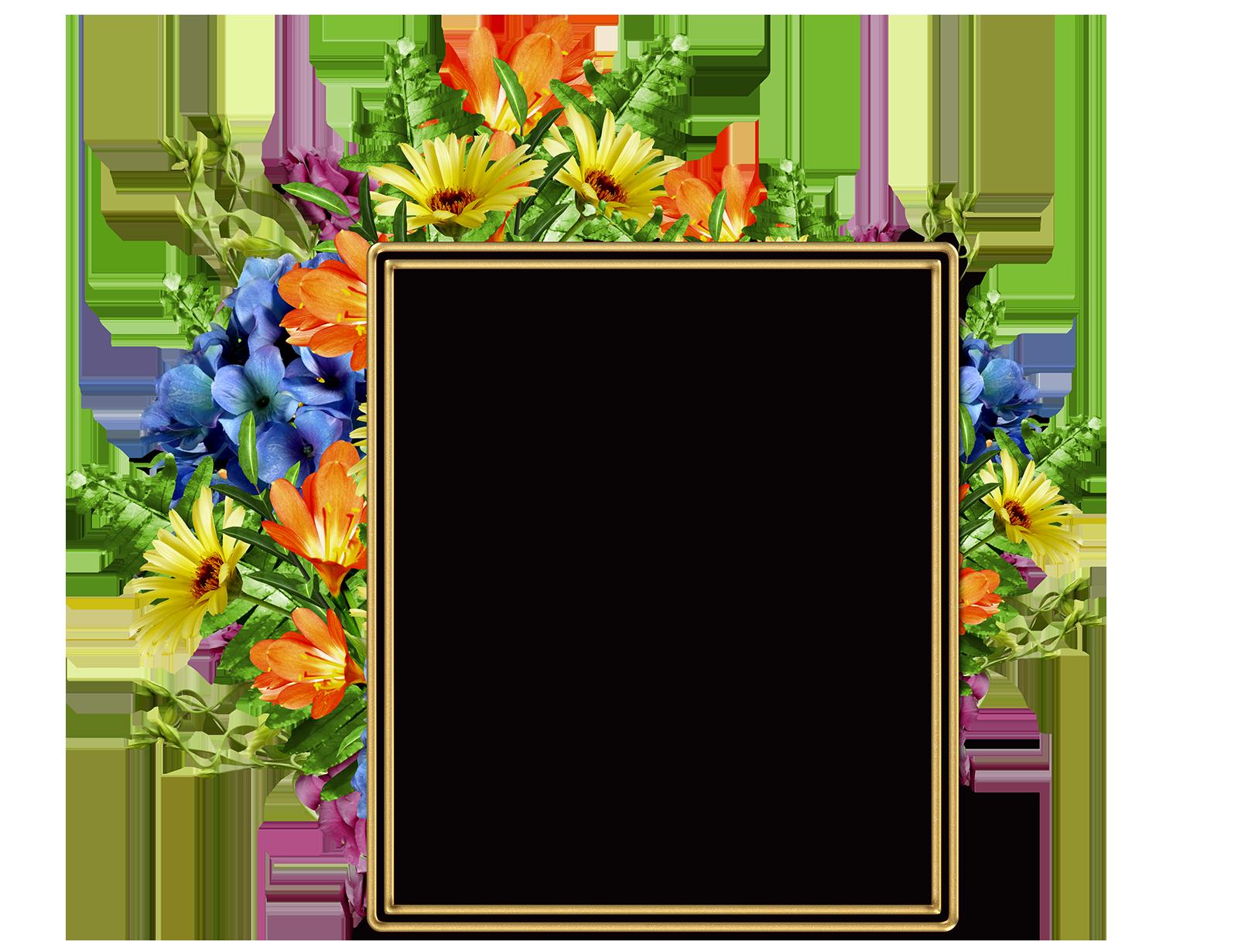 Lindo Marco Para Fotos Con Diversas Flores Bonitas Marco De Flores Png