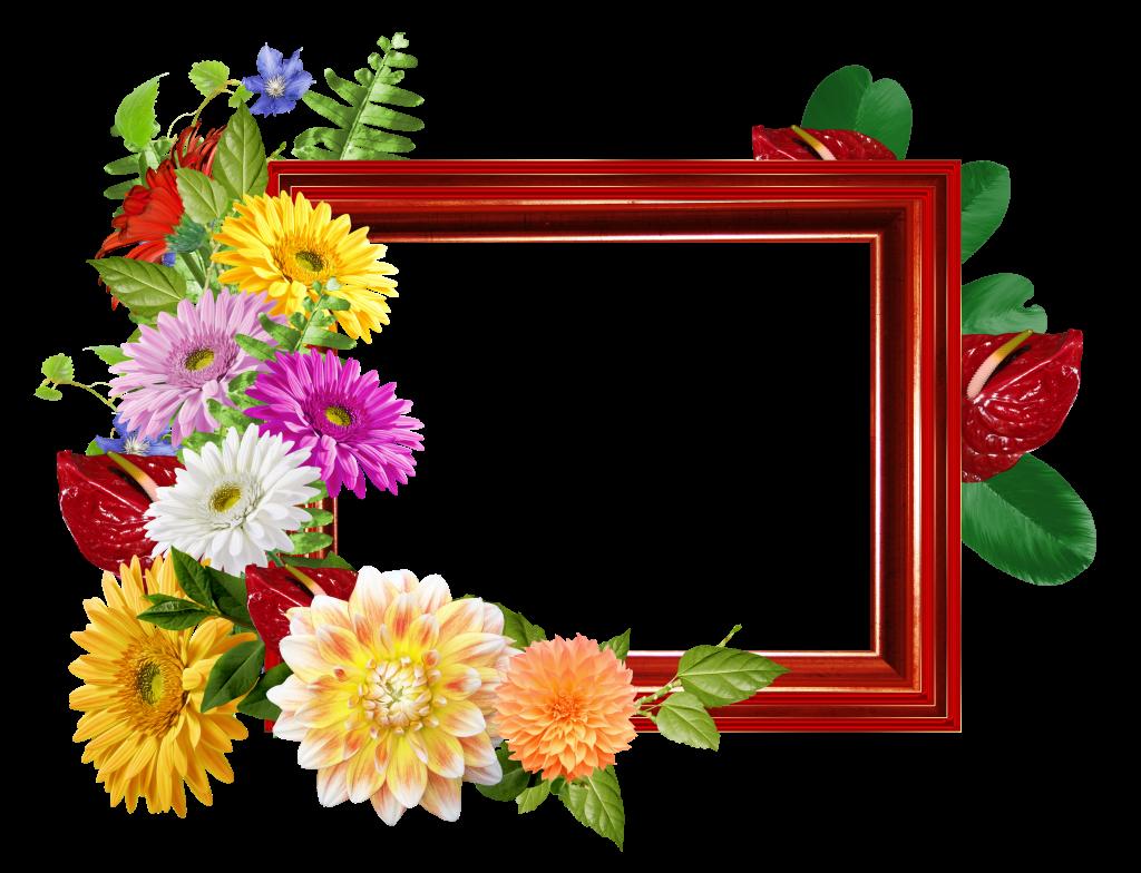 Marcos De Flores Para Fotos Png Marcos Para Descargar