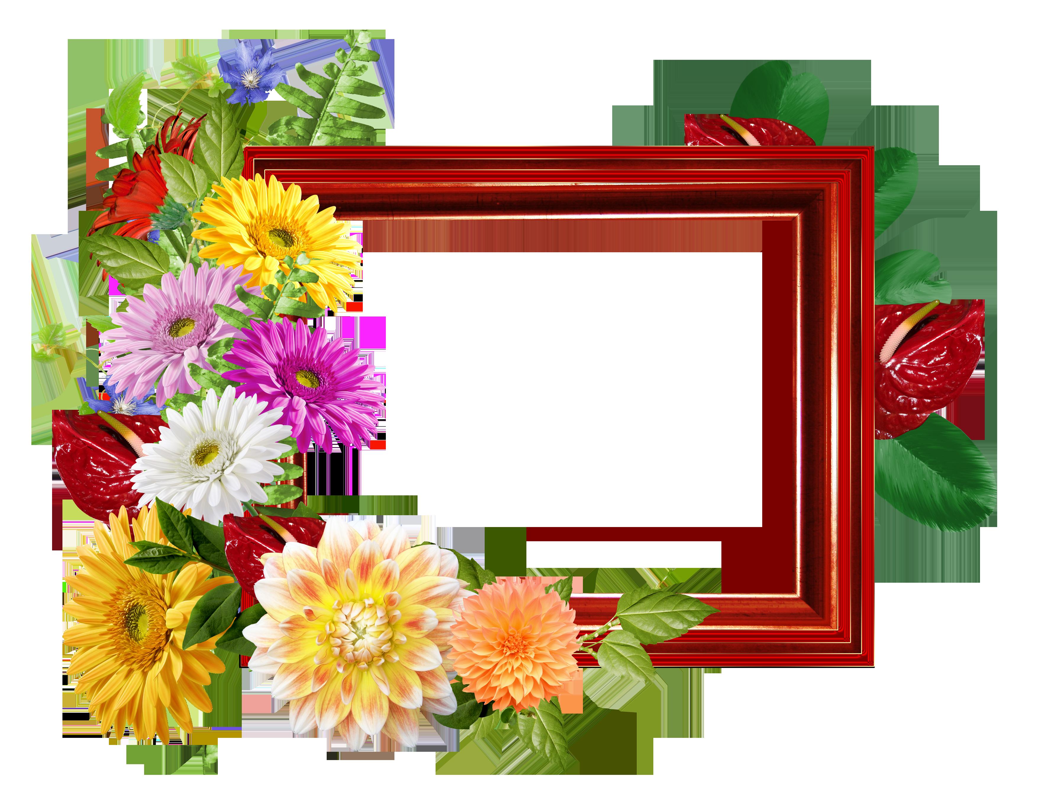 Marco de foto con dalias de colores - flores alegres