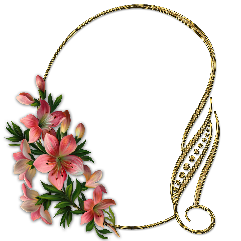 Marcos de flores para fotos con lirios coloridos en PNG
