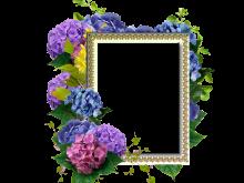Bellas flores moradas en marcos de fotos PNG