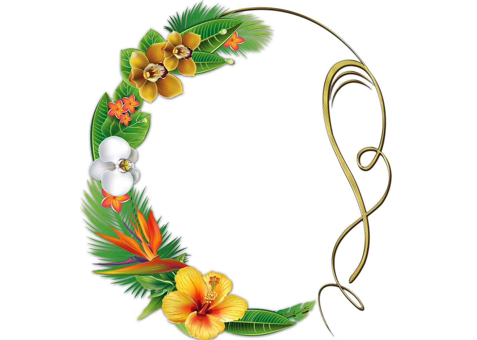 Fondo cl sico para fotos con flores coloridas marcos de - Marcos clasicos para fotos ...