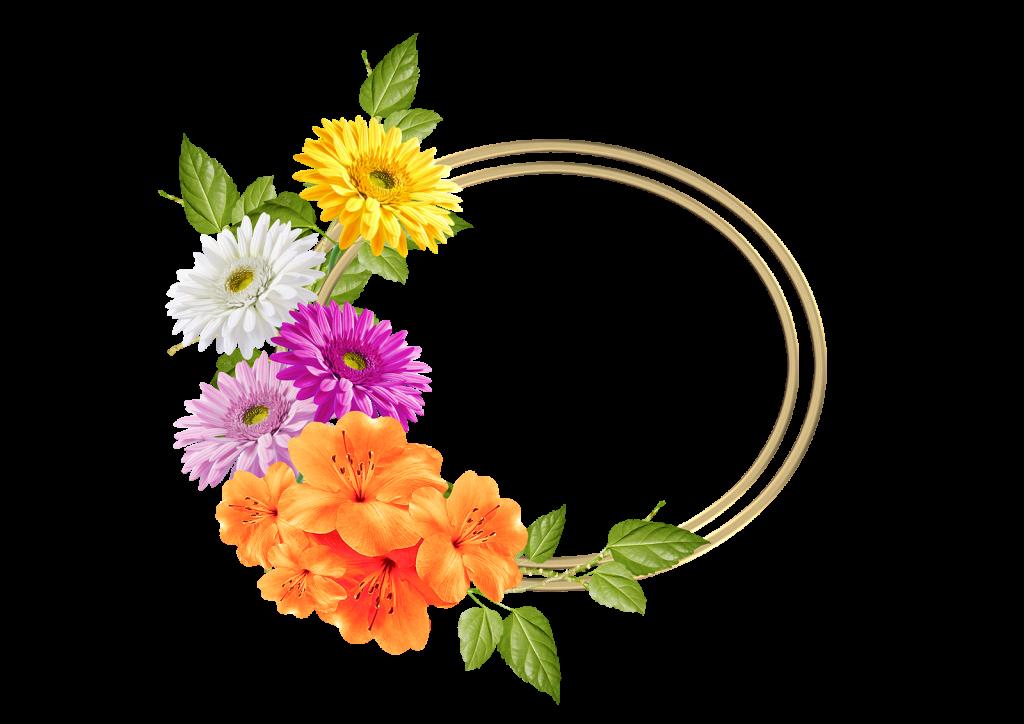 Marco de flores con margaritas y lirios para fotos