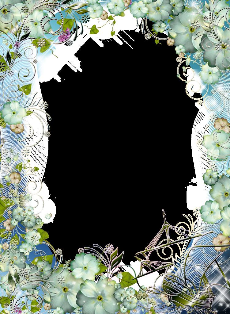 Para Fotos con lindas Hortensias blancas