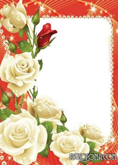 Marco de foto con rosas blancas